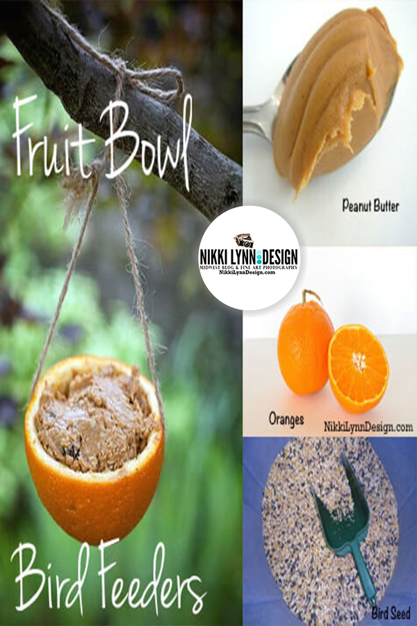 Fruit Bowl Bird Feeders