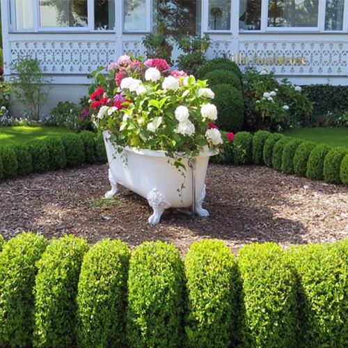 Bathtub Garden Flower Planter