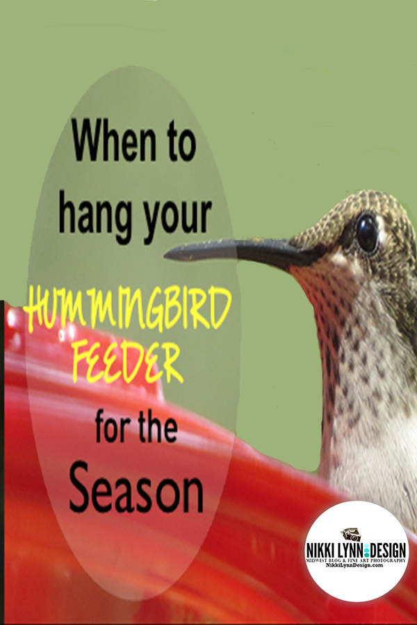 When do the hummingbirds return and When to hang your hummingbird feeders for the season