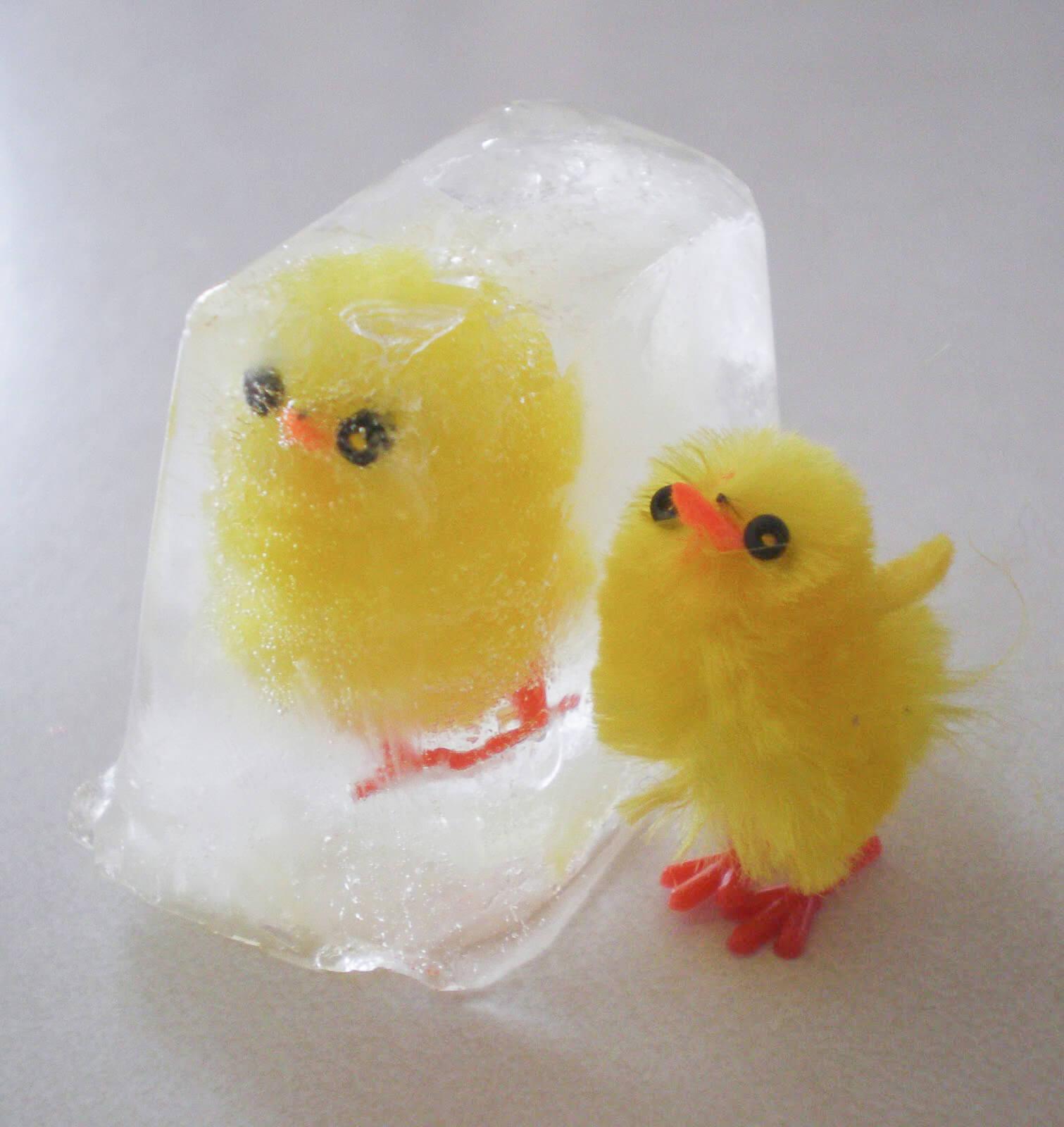 baby-shower-birds