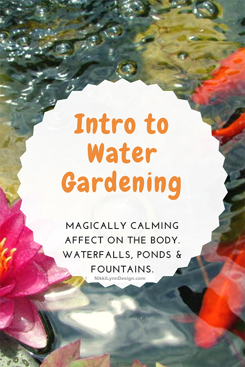 Introduction To Water Gardening