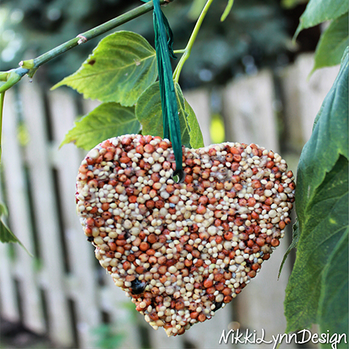 How To Make Hanging Homemade Birdseed Ornaments