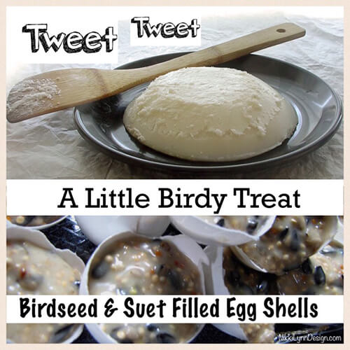 Bird Seed Suet Filled Egg Shell Recipe - Want to make a healthy treat for the birds this winter? Try this bird seed suet filled egg shell recipe and add whatever ingredients you think your backyard feathered friends will like. Not a fan of using the egg shells? You can make bricks for your block feeders too.