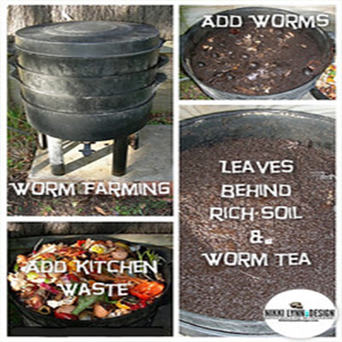 Composting with worms for good soil