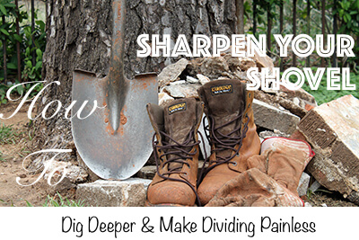 Sharpening Your Garden Shovel Spending 5 minutes of time per year sharpening your garden shovel can eliminate your backbreaking work by digging deeper and dividing painless.