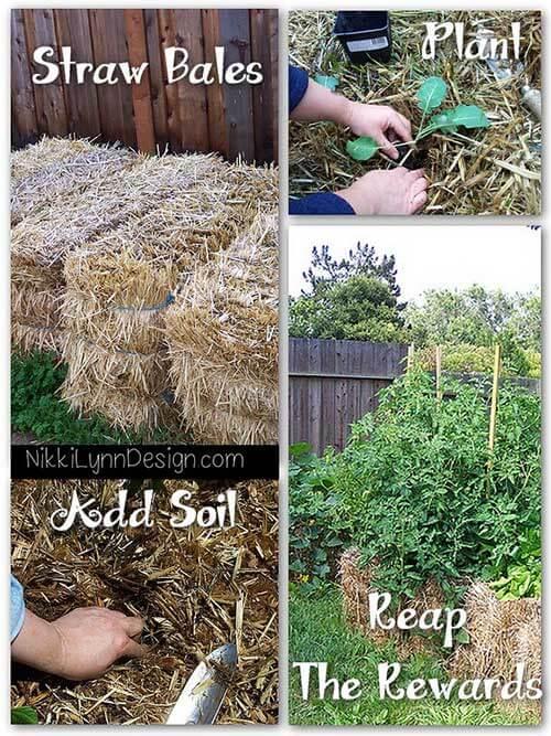 Straw bale garden nikki lynn design for Help me design my garden