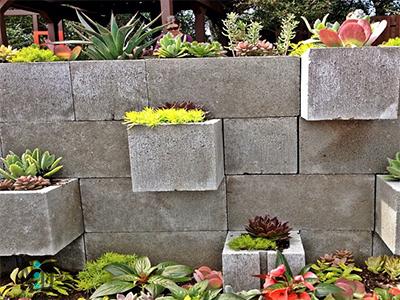 Cinder Block Garden Planting Wall