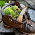 Hen and Chick Boot Planter