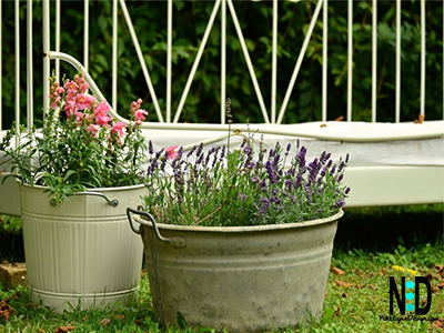 Antique metal tubs with handles add visual appeal to any yard, deck or patio. Their size is perfect for being able to plant and grow a vast amount in the tubs.