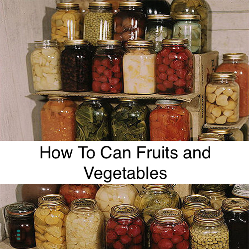 How To Can Fruits and Vegetables