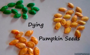 Dying Pumpkin Seeds