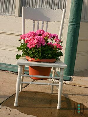 Wooden Chair Flower Pot Holder