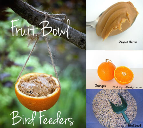 Fruit Bowl Bird Feeders Save your orange and grapefruit halves to make fruit bowl bird feeders for the birds.