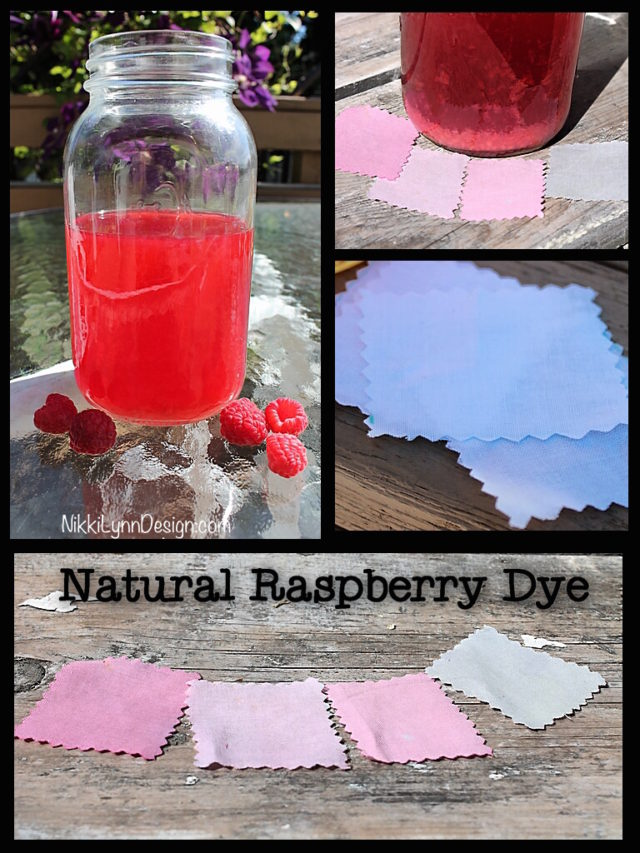 Dyeing Cotton Using Raspberries
