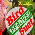 Make Your Own Suet Recipe
