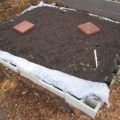 Raised Bed Using Cinder Blocks