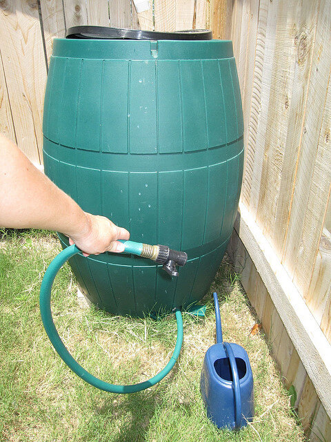 Rain Barrels to Survive Droughts - One of the best ways to keep your garden alive during a drought is to take preventative measures. Occasionally, a drought will be predicted far in advance, or those already experiencing a drought will be given a few weeks of heavy rain.