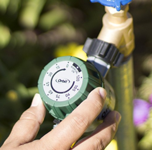 Water Timer - I can't stress the fact that you need to faithfully water your tomatoes every day. Using a strict schedule. If you do not water regularly you will have all sorts of issues. Some of those issues will not be seen until the plant bears fruit.