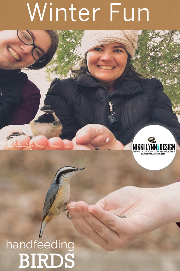 Handfeeding Chickadees and Nuthatches