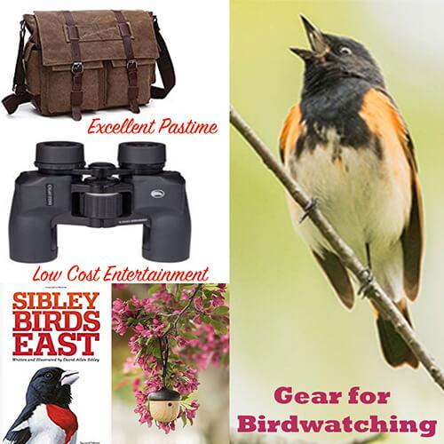 Gear for Birdwatching