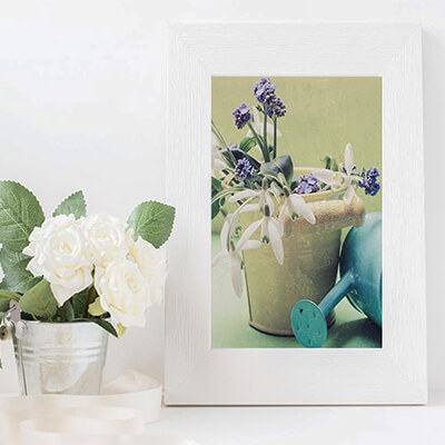 Snowdrop and Forget Me Not Botanical Prints