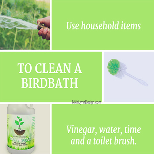 How To Clean a Birdbath - Is it time to clean your birdbath? You just cringed - I feel your pain. Here is an easy way to clean your birdbath and check out the link on how to keep the water fresh and clean.