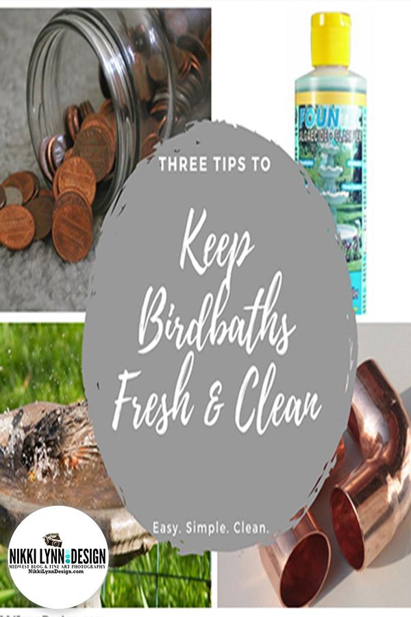 Keep Birdbaths Fresh and Clean