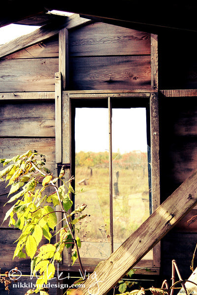 Inside the Honey House Old Building Photography Wall Art Print