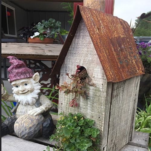 Old Birdhouse Planter - Repurpose an old birdhouse with low growing annuals and greens.  Believe me, they look terrific. Alternative flower container.