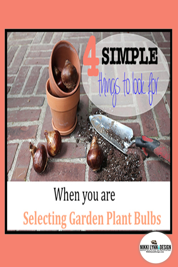 Selecting Garden Plant Bulbs