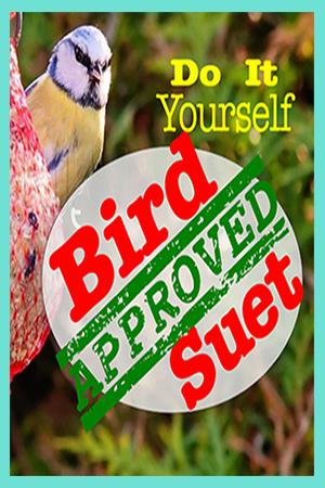 DIY Suet For the Birds
