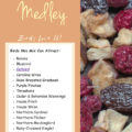 Dried Fruit Medley Bird Food Recipe