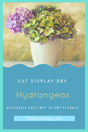 How to Display and Dry Hydrangeas