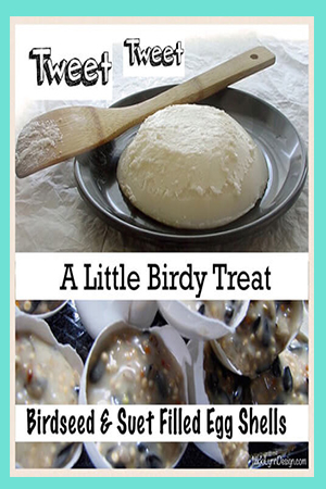 Bird Seed Suet Filled Egg Shell Recipe