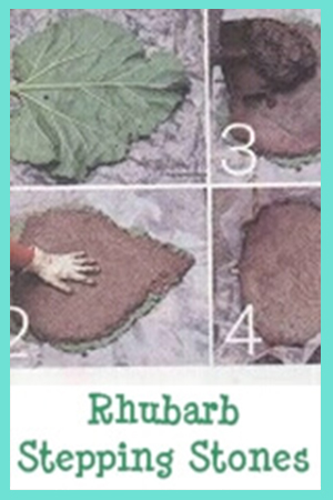 DIY Rhubarb Stepping Stones