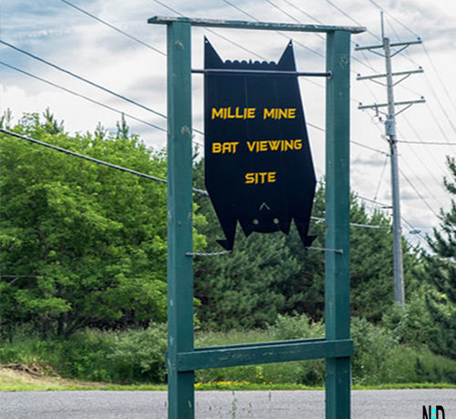 Millie Mine Bat Viewing Site and Trail Iron Mountain Michigan