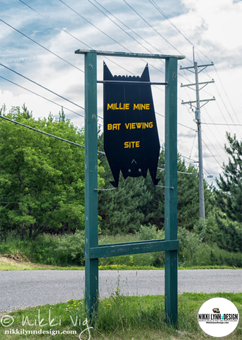 Millie Mine Bat Viewing Site and Trail Iron Mountain, Michigan