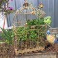 Old Bird Cage Garden Planter