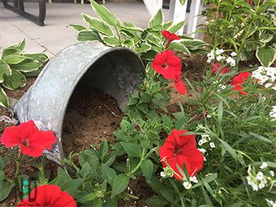 Oversized Flower Funnel Ideas for Planting Flowers in Flower Garden