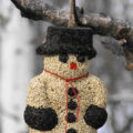Snowman seed ornament contains peanuts and nyjer seed. The ornament can attract: American goldfinches, Common redpolls, Dark-eyed juncos, goldfinches...