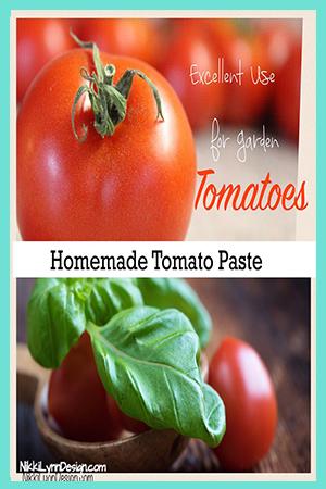 Homemade Tomato Paste