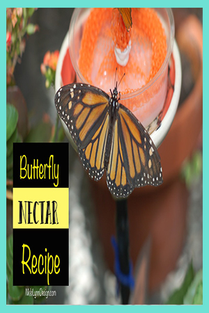 Butterfly Nectar Food Recipe