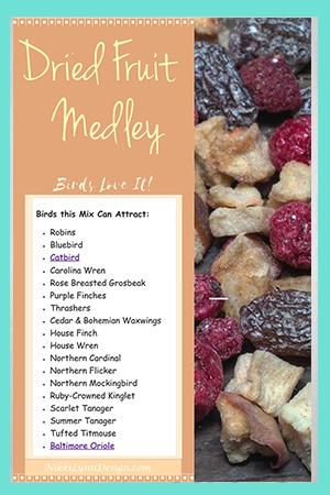 Dried Fruit Medley Birdfood Recipe