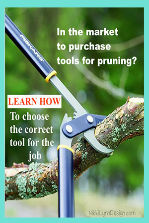 Pruning Tools - What tools are needed to prune your plants properly.