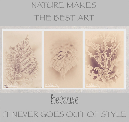 Antiqued Vintage Leaves Collection - heavy grain & an antique finish pull these images together. There are 3 prints in this fine art wall collection.