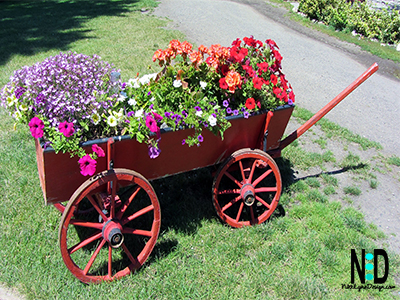 Just Humming Along Flower Garden Planter - Feeding garden stations on wheels are so it is easy to pull into the garage in cases of frost. Go ahead plant your flowers in early spring and wheel them in at night.
