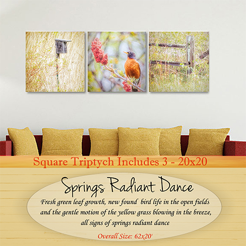 Springs Radiance Collection
