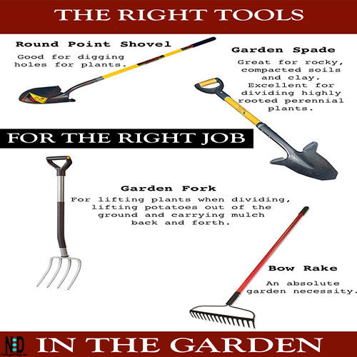 If you're thinking about taking your gardening seriously and getting out there every day to increase the attractiveness of your garden, then you will want to be picking the right gardening tools to help you achieve this.