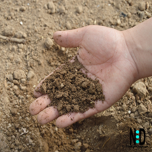 Elements To Good Garden Soil
