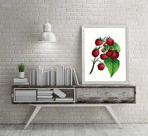 Vintage Delicable Fruit Kitchen Art